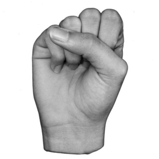 ASL Fingerspelling by MemoryGap