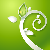 SPA Music for Relaxation and Massage Therapy icon