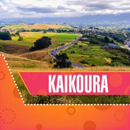 Kaikoura Tourism Guide