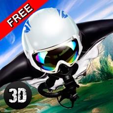 Activities of Wingsuit Sky Dive 3D