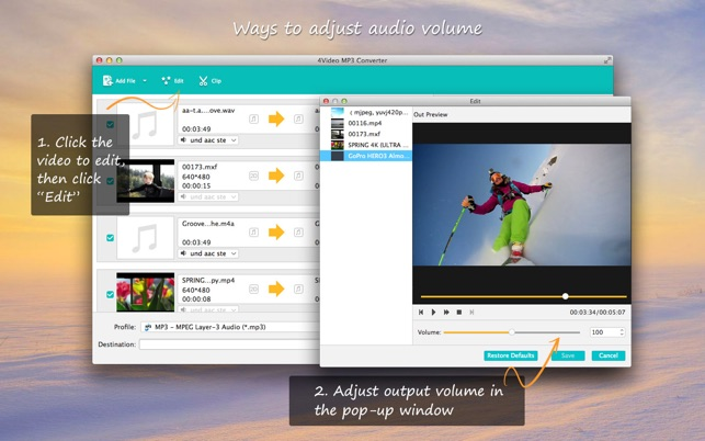 4Video MP3 Converter Screenshot