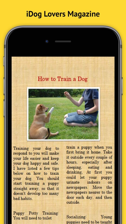iDog Magazine - The Best new Dog, Puppy Training, advice and tips Magazine for Dog Owners
