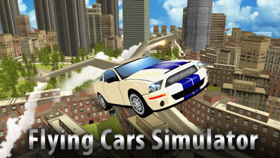 Flying Car Driver Simulator 3D