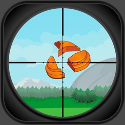 Shooting Range - Aim & Fire at the Target InterNational Championship