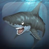 Codes for Big Shark Jetpack Ride: Dream World Adventure Hack