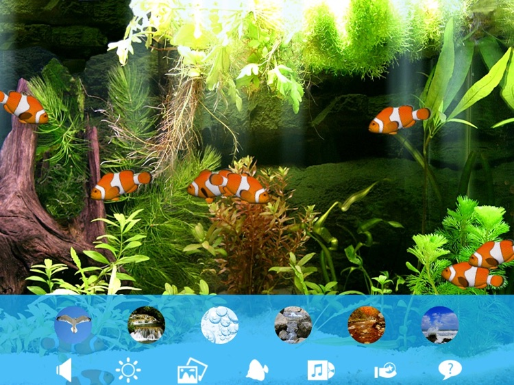 Aquarium Now HD screenshot-4