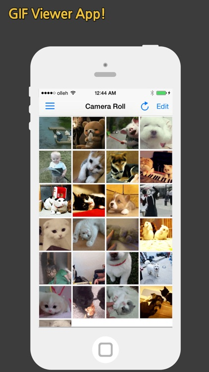 GIF Show Pro - GIF Viewer and Album screenshot-0