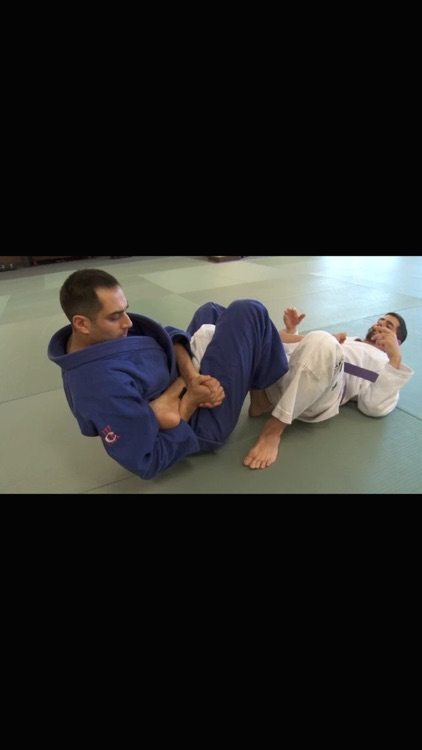 Brazilian Jiu Jitsu: Brown Belt Requirements