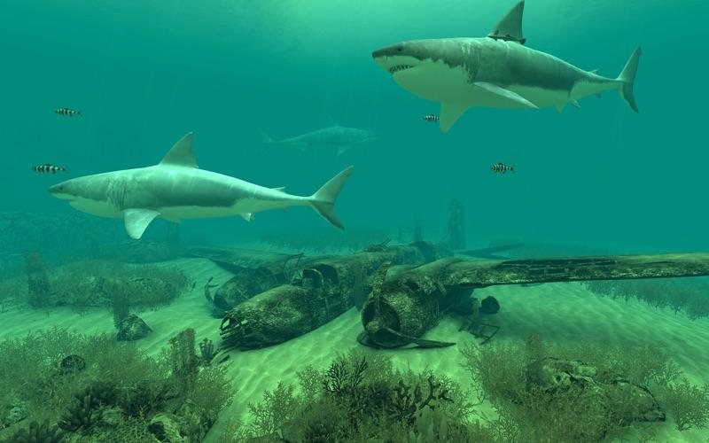 Screenshot #3 for Sharks 3D