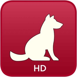 Dog Medical Agenda - HD