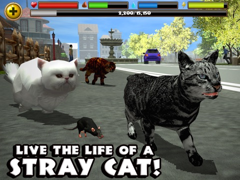 Stray Cat Simulator на iPad
