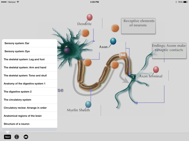 SLC: Anatomy and Physiology on the App Store