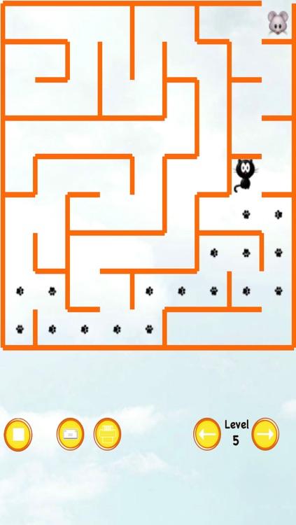 Cat Maze Race