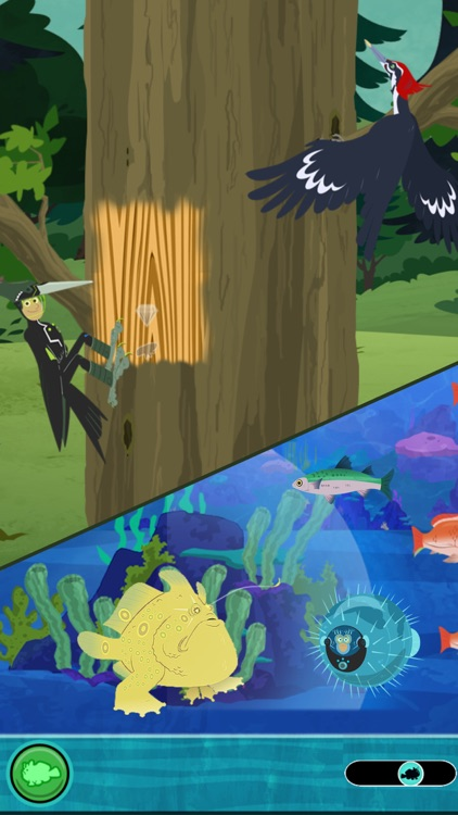 Wild Kratts World Adventure screenshot-3