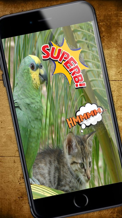 comic - photo stickers - Funny stickers - Premium screenshot-4