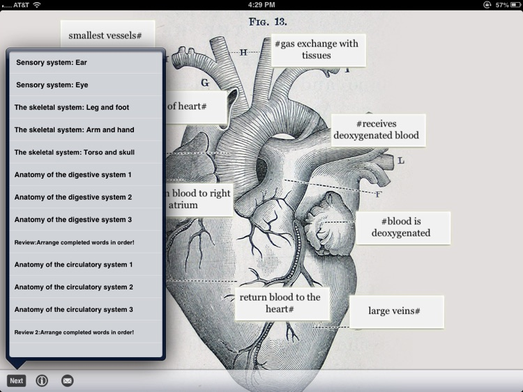 SLC: Anatomy and Physiology screenshot-4