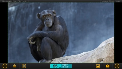 Artemis Director's Viewfinder Скриншоты3