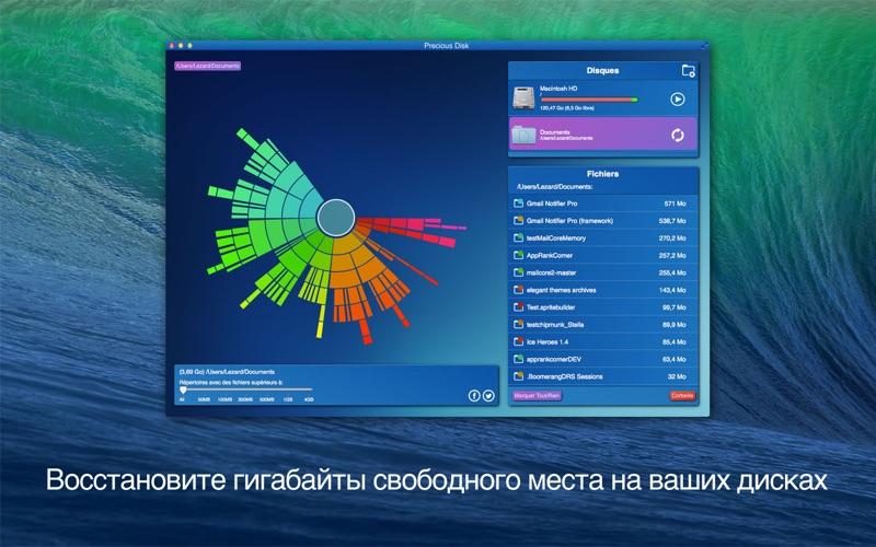 Precious Disk скриншот программы 1