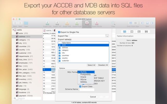 ‎ACCDB MDB Explorer - Open, view & export Access files