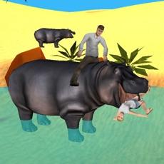 Activities of Hippo Simulator