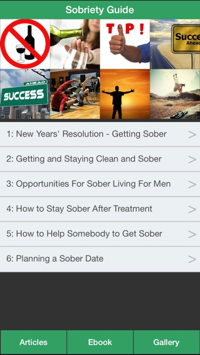 Sobriety Guide - Succeeding at Your Sober Resolutions! screenshot one