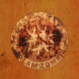 I Am Z