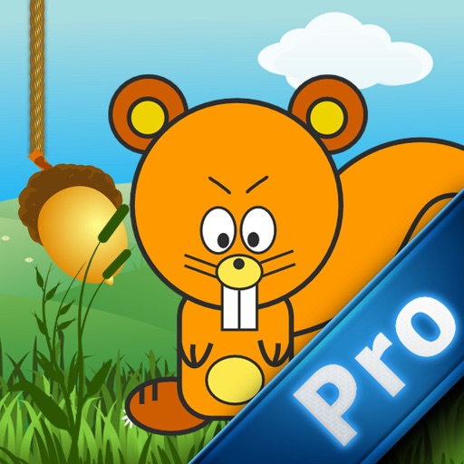Super Squirrel Mania PRO