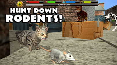 Stray Cat Simulator App Reviews - User Reviews of Stray Cat