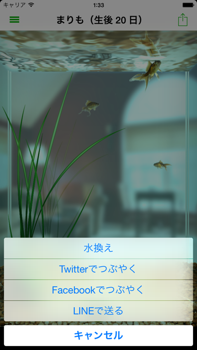 まりも ScreenShot1