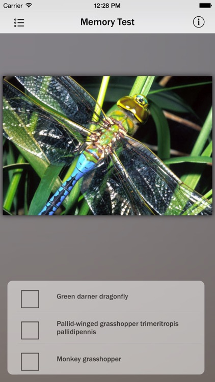 Animals and Insects screenshot-4