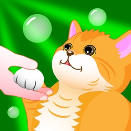 Enjoy with Cat -HANDY-