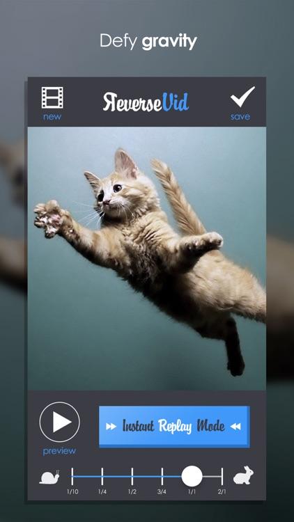 Reverse Vid + Backward Playing Video Rewinder for Vine and Instagram screenshot-3