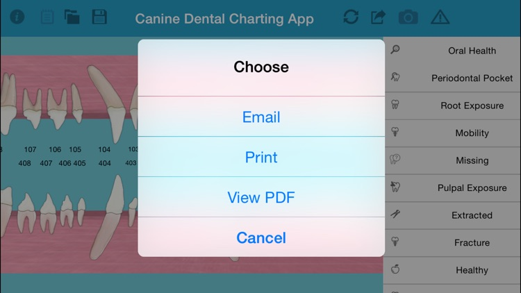 Pet Dental Charting- For veterinarians and technicians, Digital solution for dental charting screenshot-4