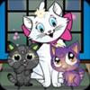 Cat Knap - Extreme Kitten Thump
