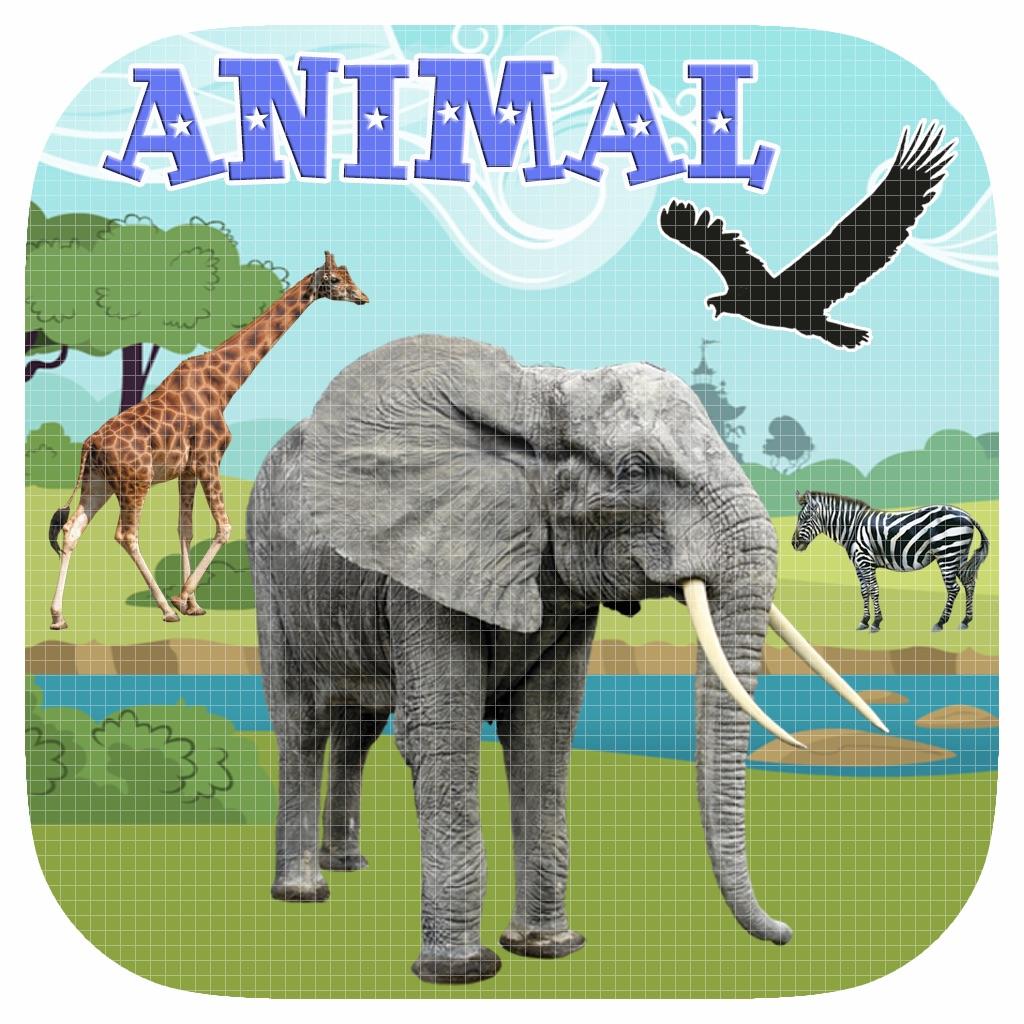 Animal Games For Kids hack