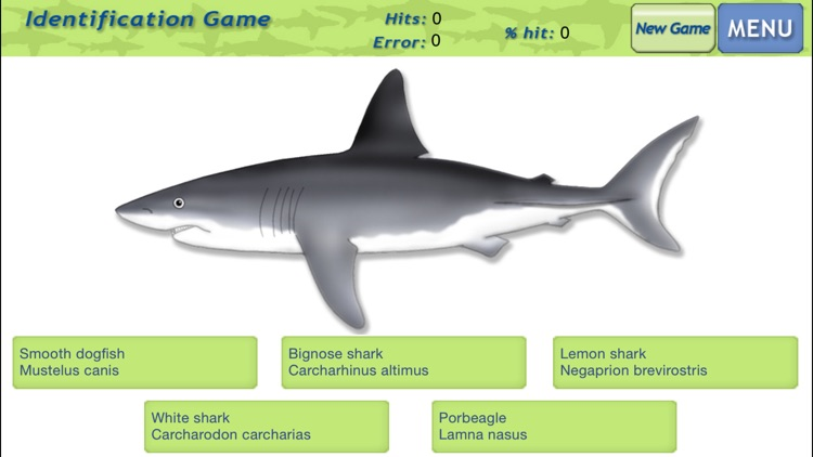 Sharks & Rays - Identification Guide screenshot-3