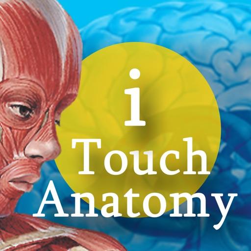 i Touch Anatomy