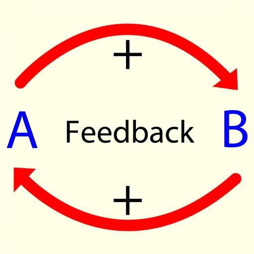Feedback Model