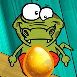 Crocodile egg