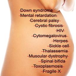 Pregnancy Birth Defects Prevention