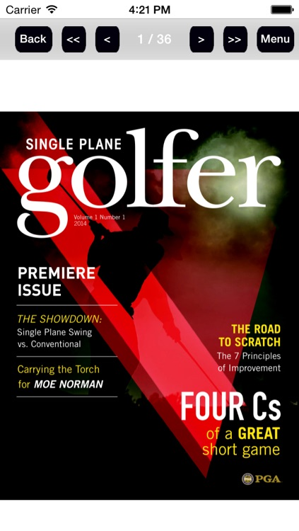 Single Plane Golfer screenshot-1