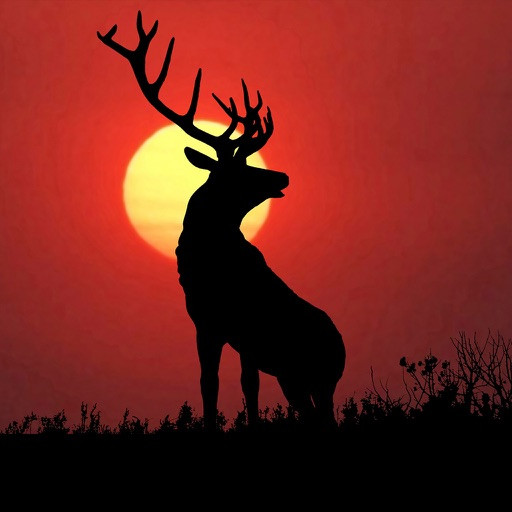 Deer Hunting Wallpaper and Background