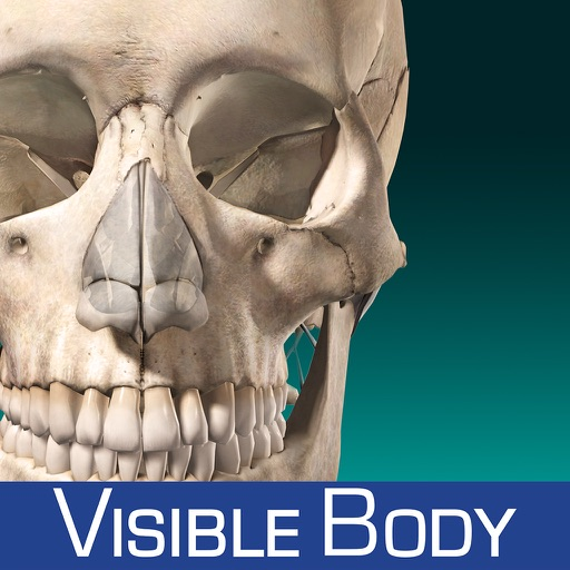 Skeleton Anatomy Atlas: Essential Reference for Students and Healthcare Professionals icon