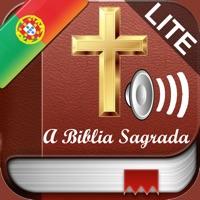 Codes for Free Holy Bible Audio mp3 and Text in Portuguese - Grátis Bíblia Sagrada áudio e texto em Português Hack