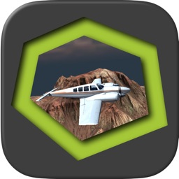 Flight Simulator - Beenoculus
