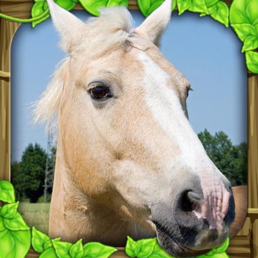 Wild Horse Simulator icon