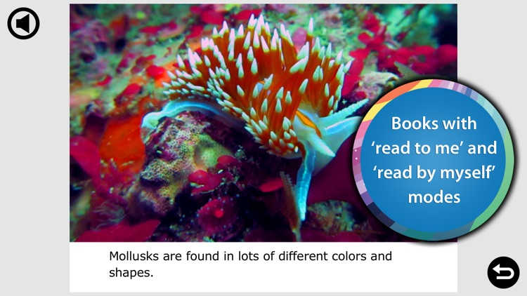 Ocean Animal Learning - Educational Games, Books and Videos about Marine Life by b-creative Journey