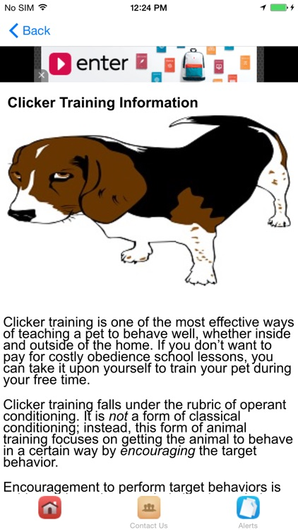 Dog Obedience Training With Clicker