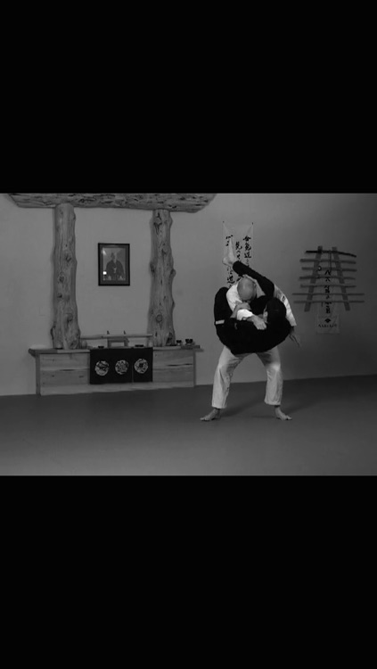 Brazilian Jiu Jitsu: Purple Belt Requirements screenshot-4