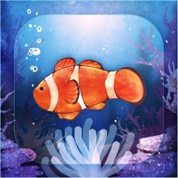 Sim Aquarium Anemone Clownfish By Ladislav Vojnic